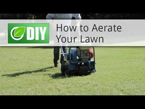 DIY Lawn Care Schedule For Warm Season Grasses