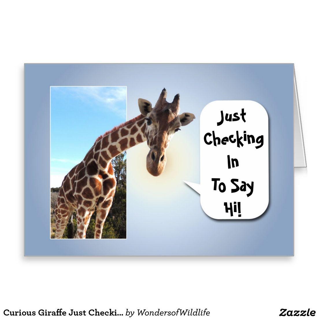 Curious Giraffe Just Checking In To Say Hi Zazzle Com Funny Good Morning Memes Big Hugs For You Say Hi