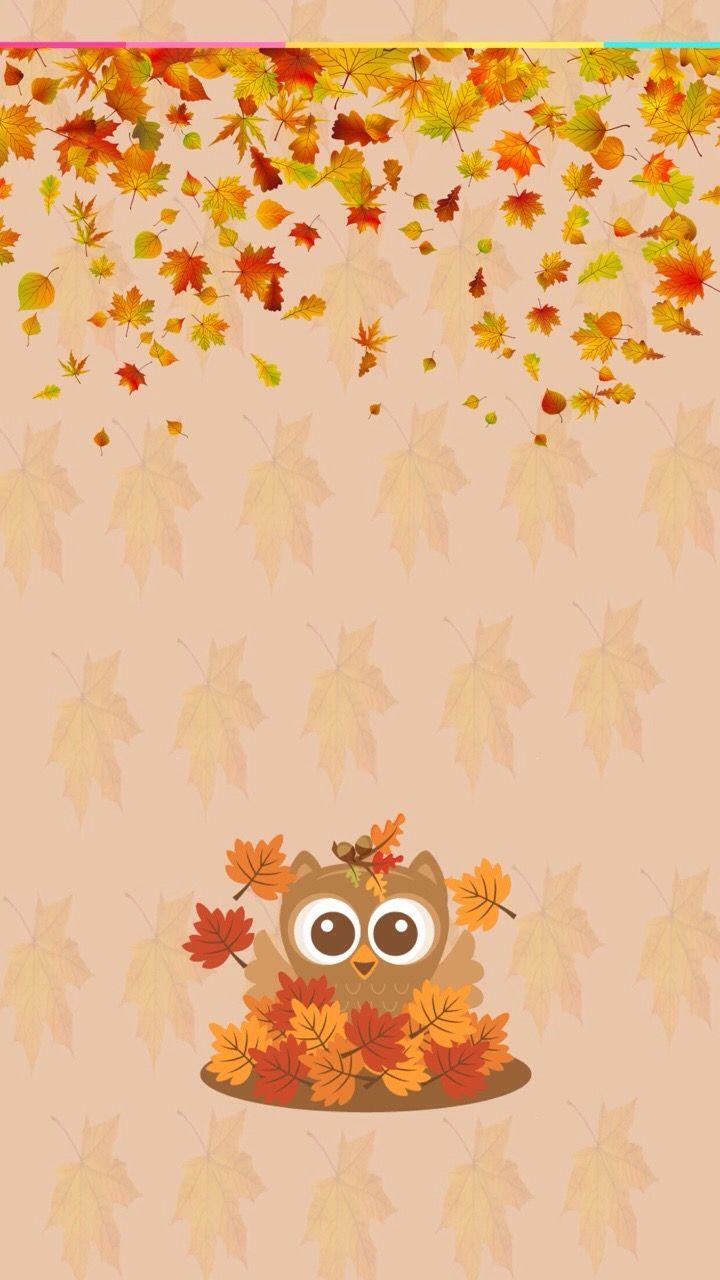Autumn Fall Owl Cute Fall Wallpaper Owl Wallpaper
