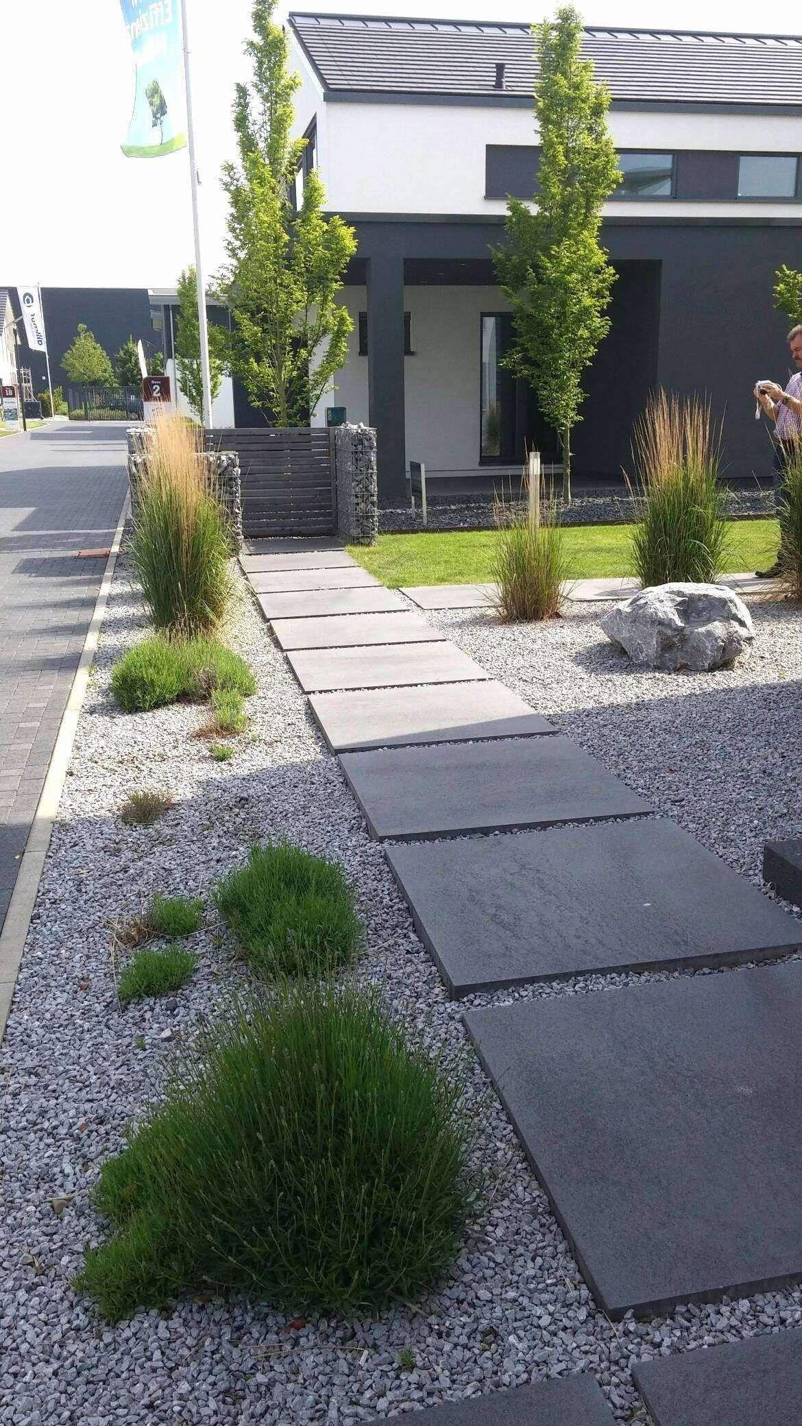 44 Genial Hydroponischer Garten Modern Landscaping Backyard Garden Landscape Landscaping Inspiration