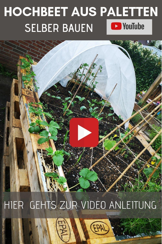 Hochbeet Aus Paletten Bauen Paletten Hochbeet Schichten Hochbeet Befullen Mischkultur 2020 Palet