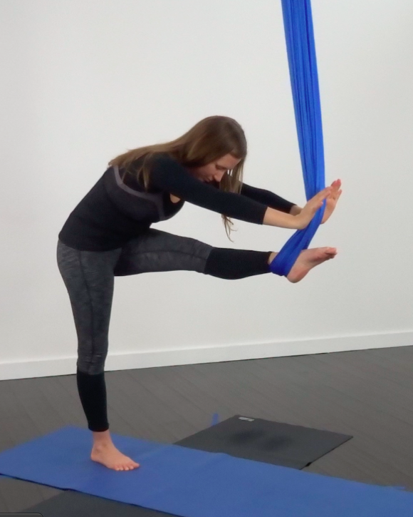 7029fbb9f9 Aerial Yoga Training Videos | Yoga Anatomy Charts, Misc | Aerial ...