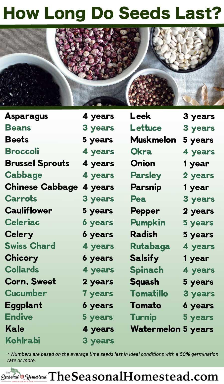 How long do seeds last the seasonal homestead in 2020