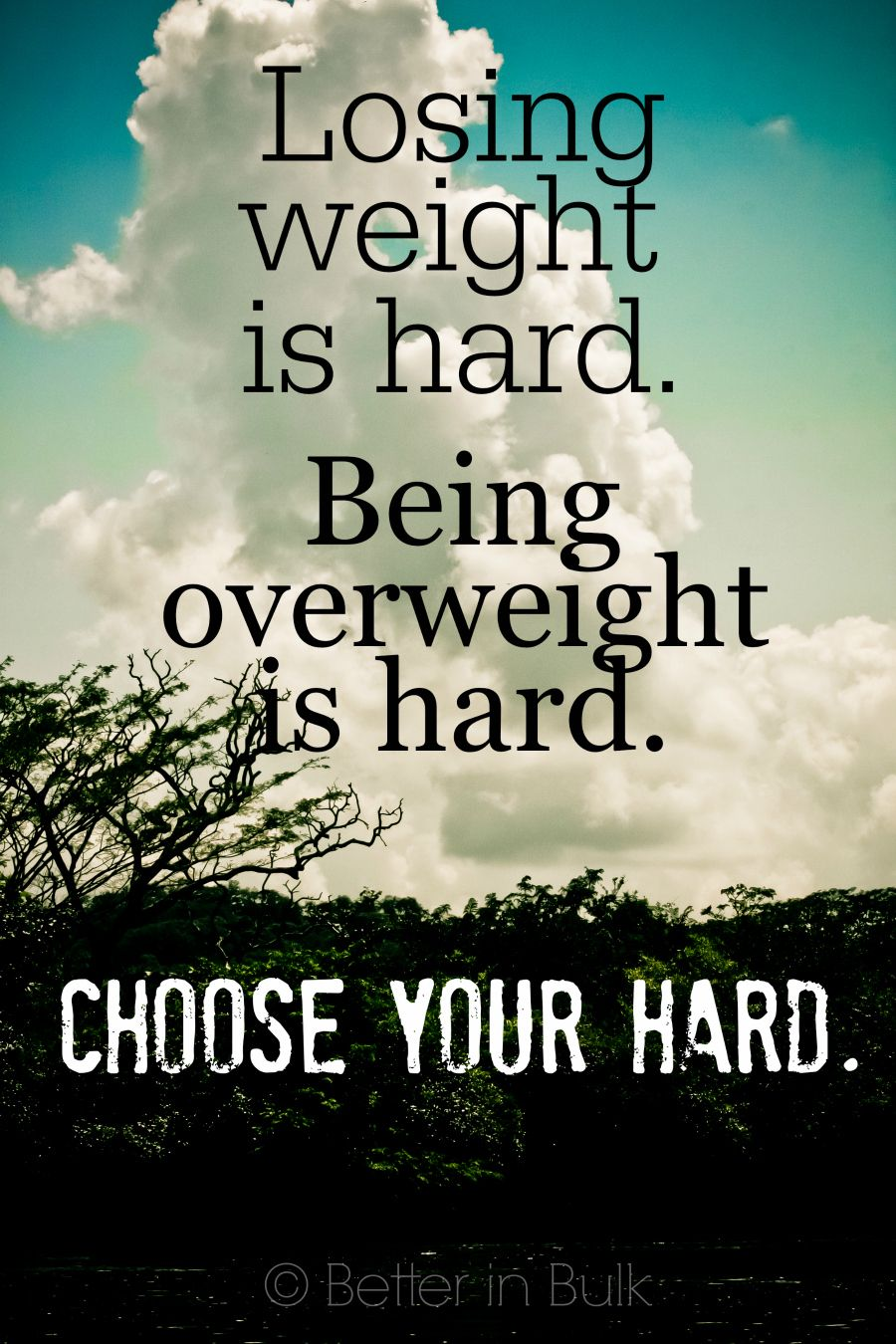 Image Losing Weight Is Hard Being Overweight Is Hard Choose