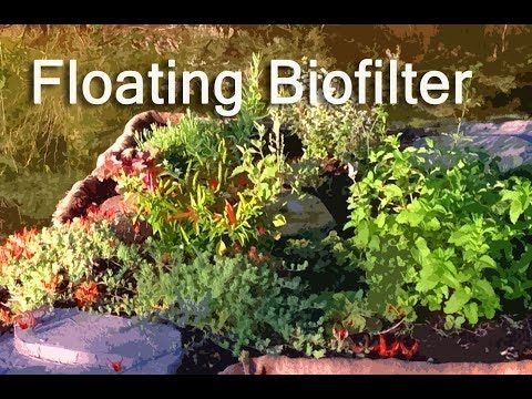 Diy Floating Bio Filter Garden Youtube Garden 400 x 300