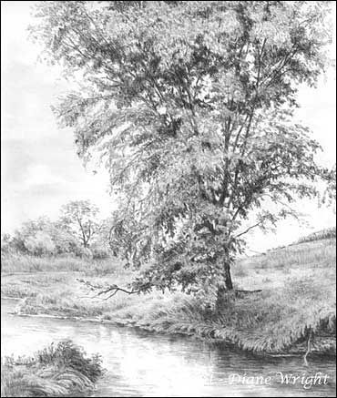 Landscapes Graphite Pencil Drawings By Diane Wright Landscape Drawings Landscape Pencil Drawings Realistic Drawings