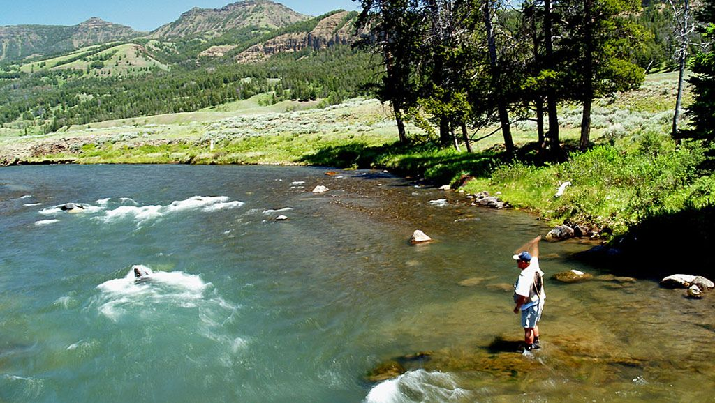 Yellowstone Country Fly Fishing Guided Fly Fishing In Montana And Yellowstone National Park About Fishing Guide Livingston Montana Yellowstone National Park