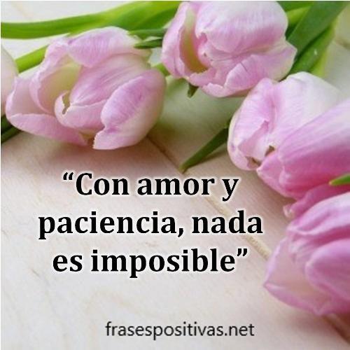 Frases Para Un Amor Imposible De Olvidar Ganchillo Pinterest