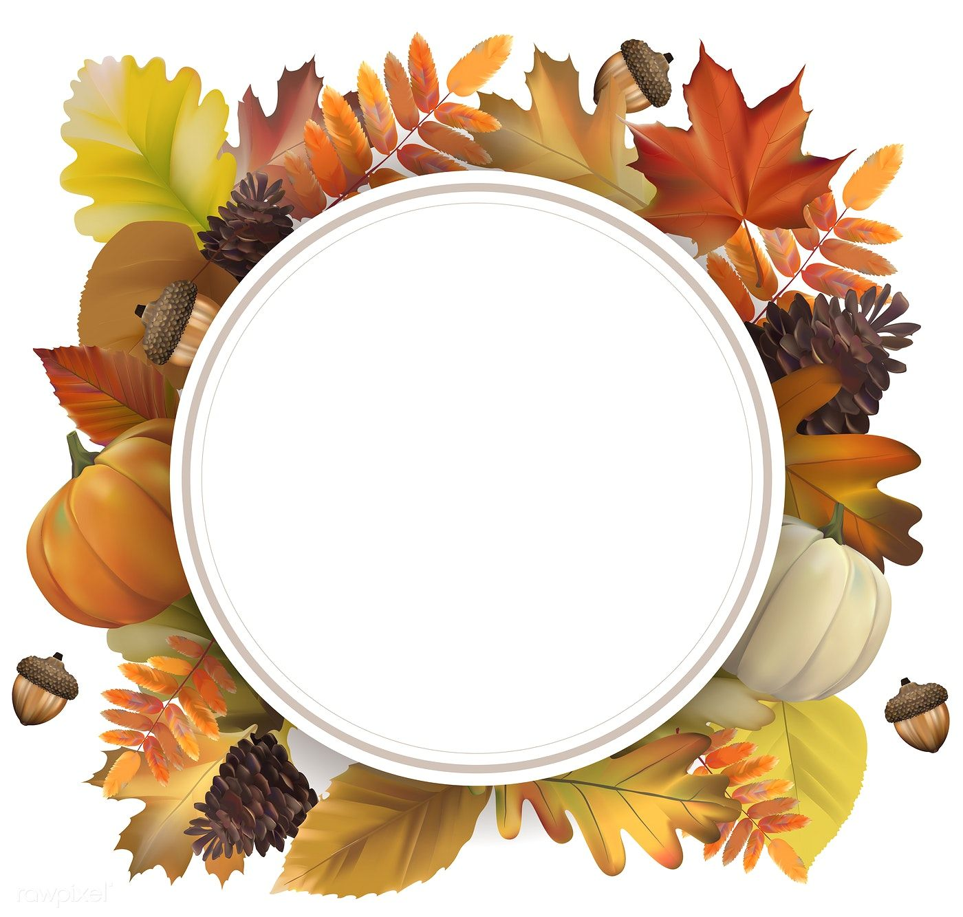 Collection of autumn leaves vector free image by