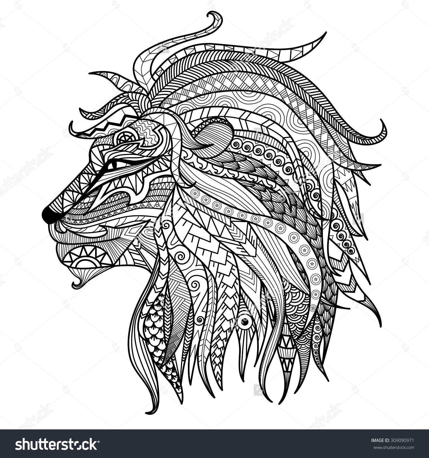 Hand Drawn Lion Coloring Page Stock Vector Illustration 309090971