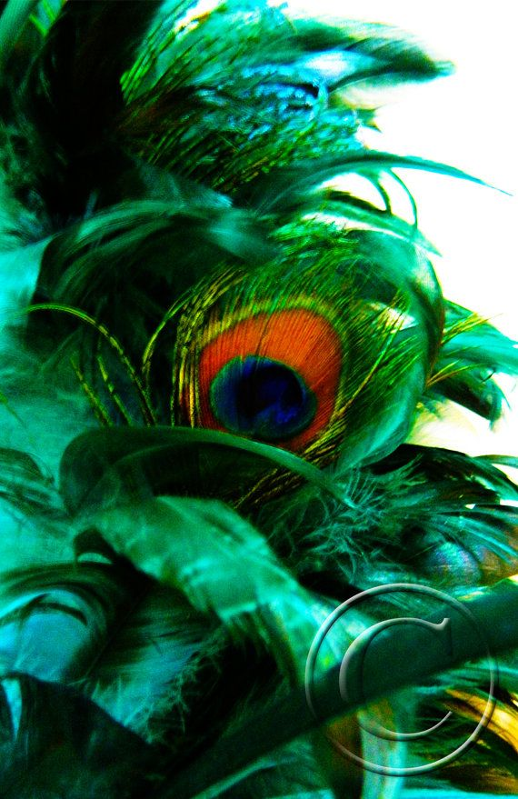 Goddess Hera / Peacock Feathers Blessing by JillPicklePrints