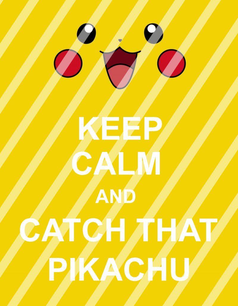 Pokemon Go Keep Calm Wall Decor Sign #1 (digital or shipped ...