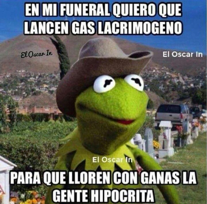 Jajaja Humor Funny Memes Spanish Humor