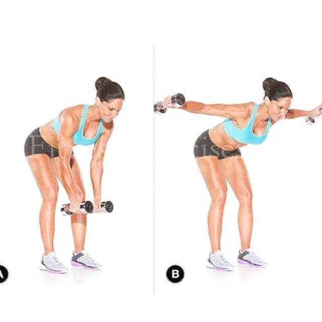 ⚫️Bent-Over Reverse Fly Works: Shoulders and upper back Holding a dumbbell  in each hand, stand with the… (With images) | Deltoid workout, Best shoulder  workout, Shoulder workout