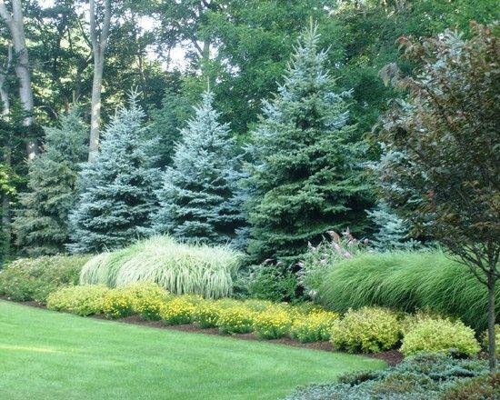 landscape boulder backyard grass
