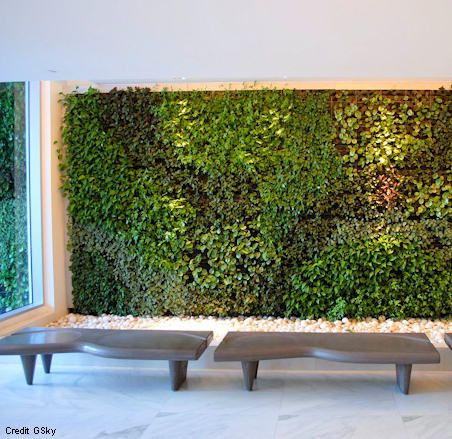 693-square-foot Green Wall at EPIC Hotel in Miami, Florida ...
