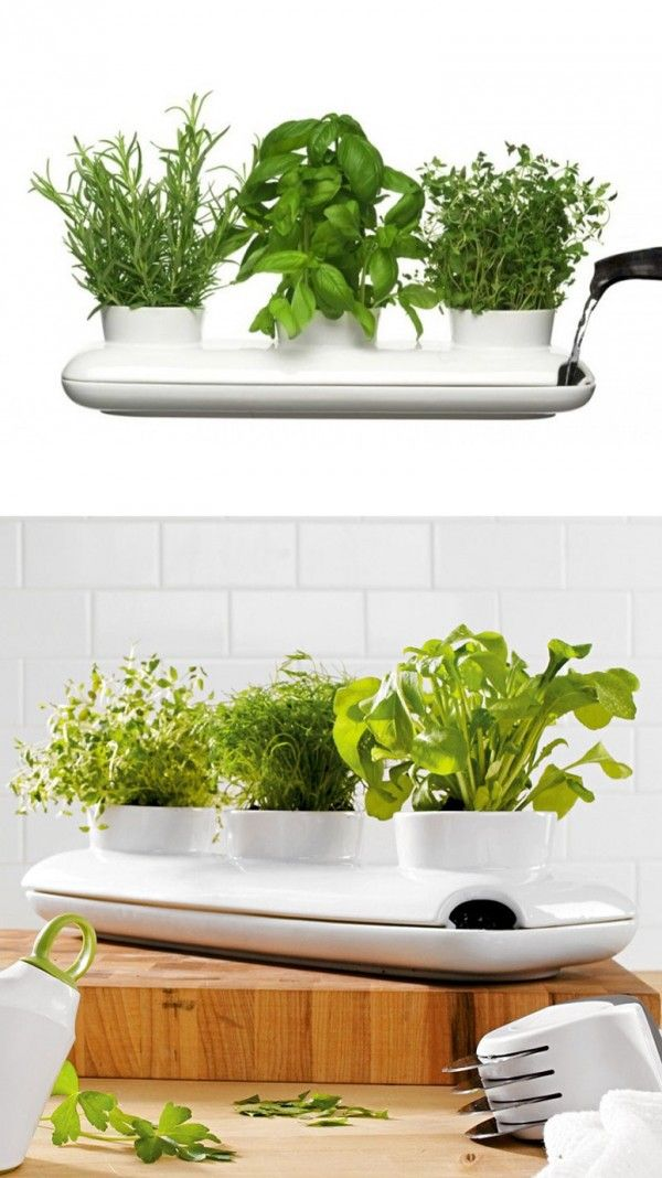 50 Unique Pots Planters You Can Buy Right Now Herbs Indoors