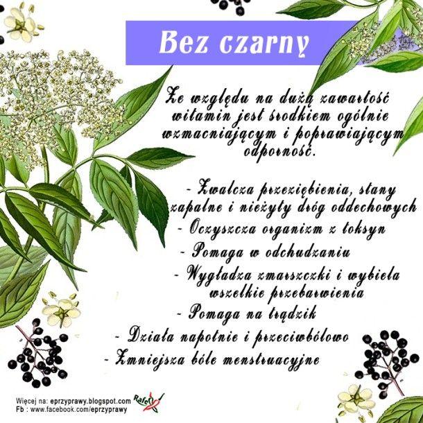Blog O Zdrowym I Naturalnym Odzywianiu Ziolach Przyprawach I Roslinach Bez Czarny Nie Tylko Na Przeziebienie Natural Medicine Health Herbs