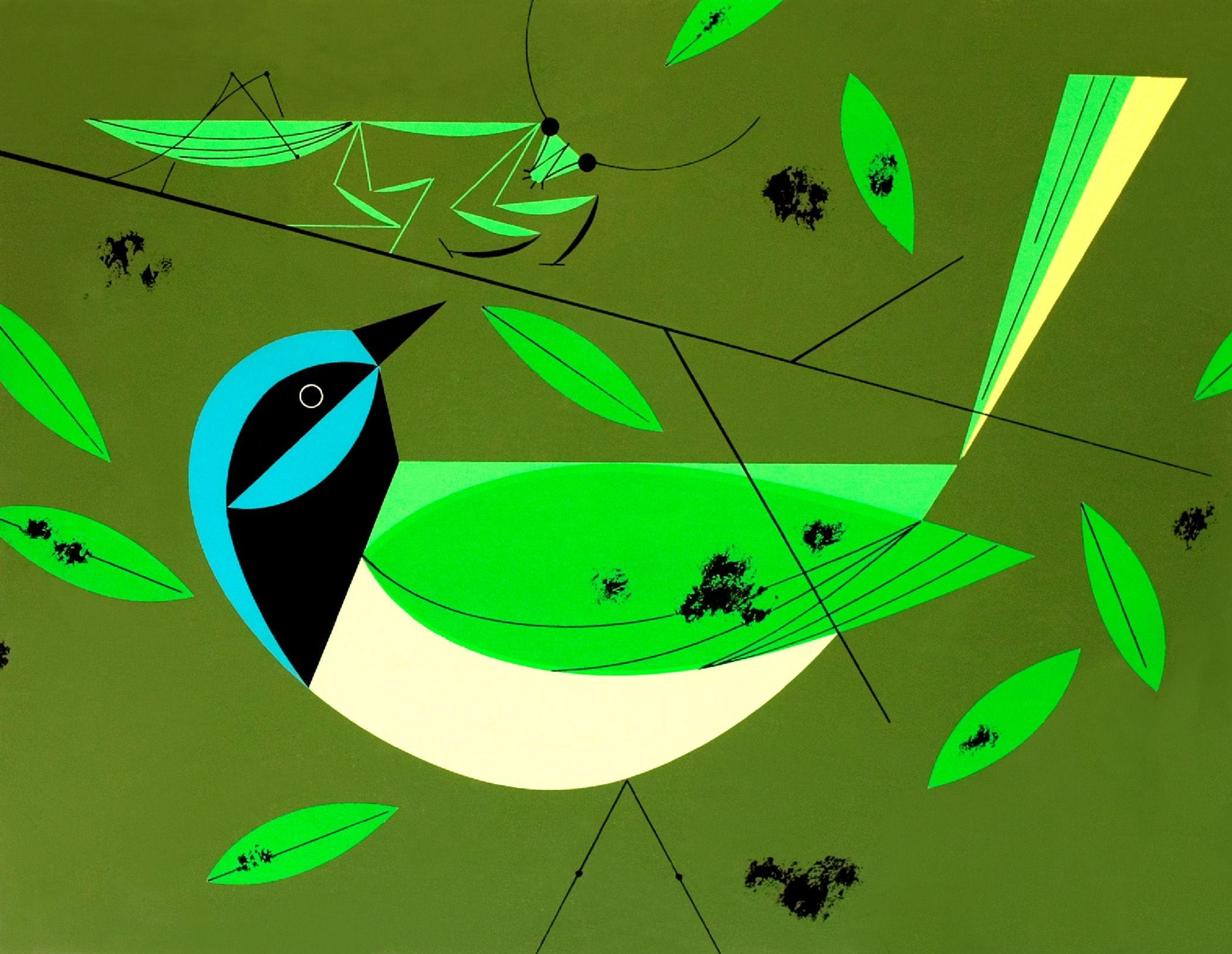 Charley Harper artwork for the walls.   Room to Grow   Pinterest ...