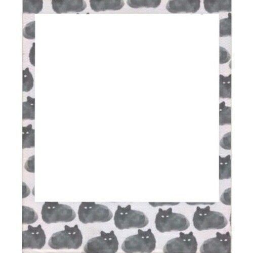 Cats Cute Frame Hipster Overlay Overlays Transparent Tumblr
