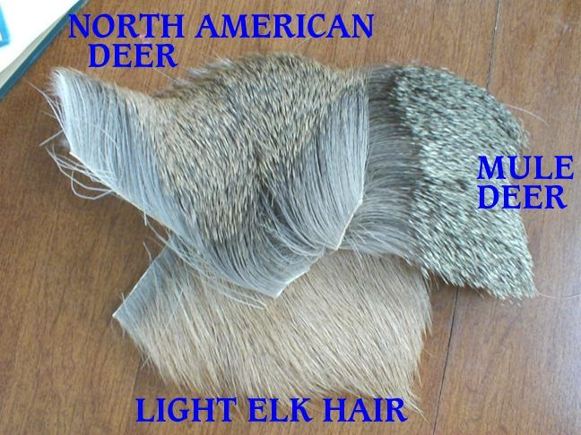 whitetail fly tying - Google Search