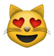 """Résultat de recherche d'images pour """"smiley amour chat"""""""