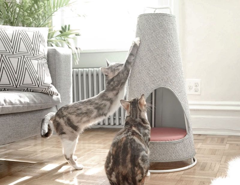 This Cone Shaped Object Is Both A Scratching Post And A Cat Bed