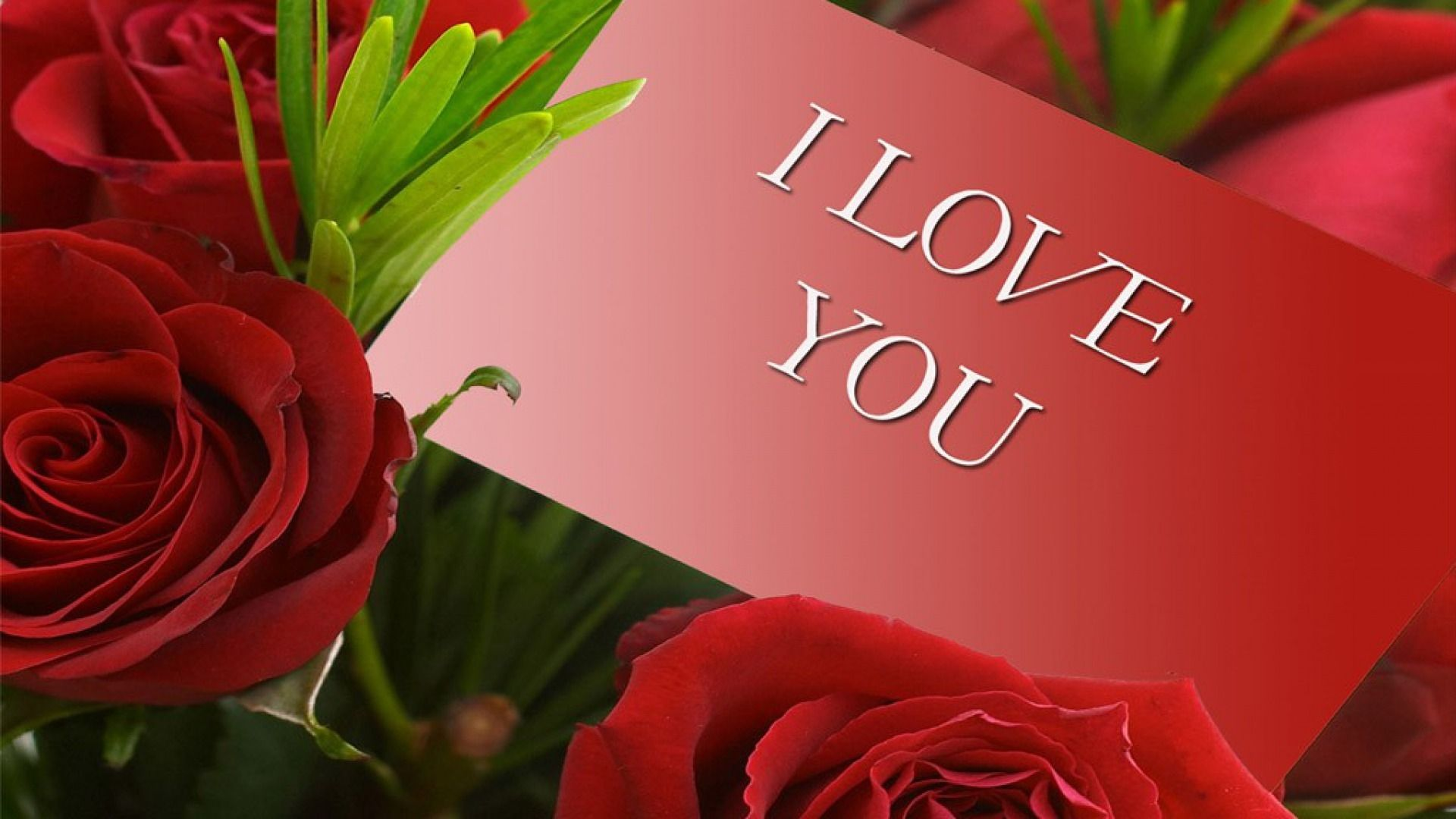 Download Download Hd Wallpaper Of I Love You Hd Download