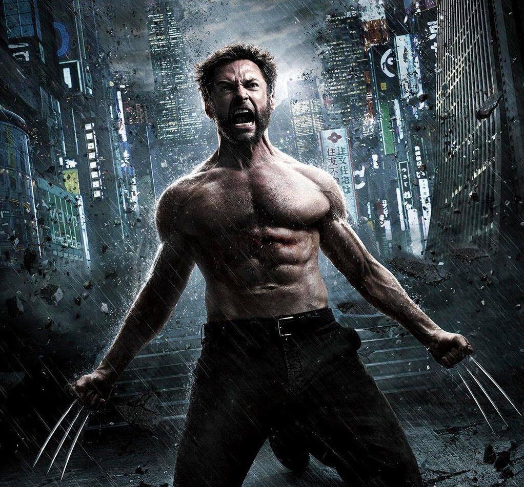 Wolverine Picture Meme Gym