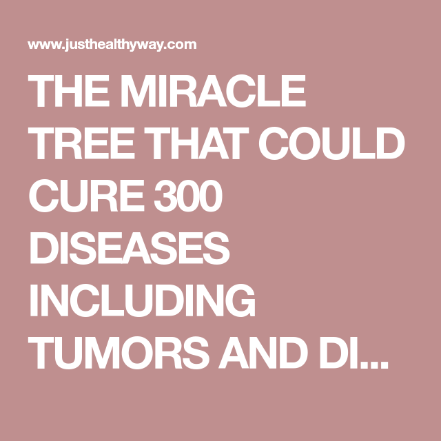 THE MIRACLE TREE THAT COULD CURE 300 DISEASES INCLUDING TUMORS AND
