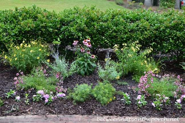 Superieur Perennial Garden By Between Naps On The Porch