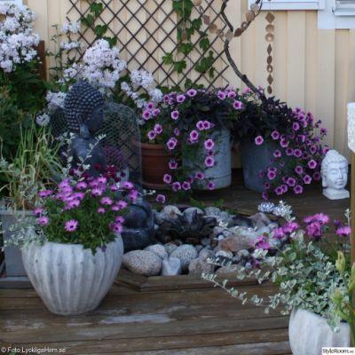 blommor,altan,uteplats,krukor,fontän,buddha,inspiration,lyckliga ...