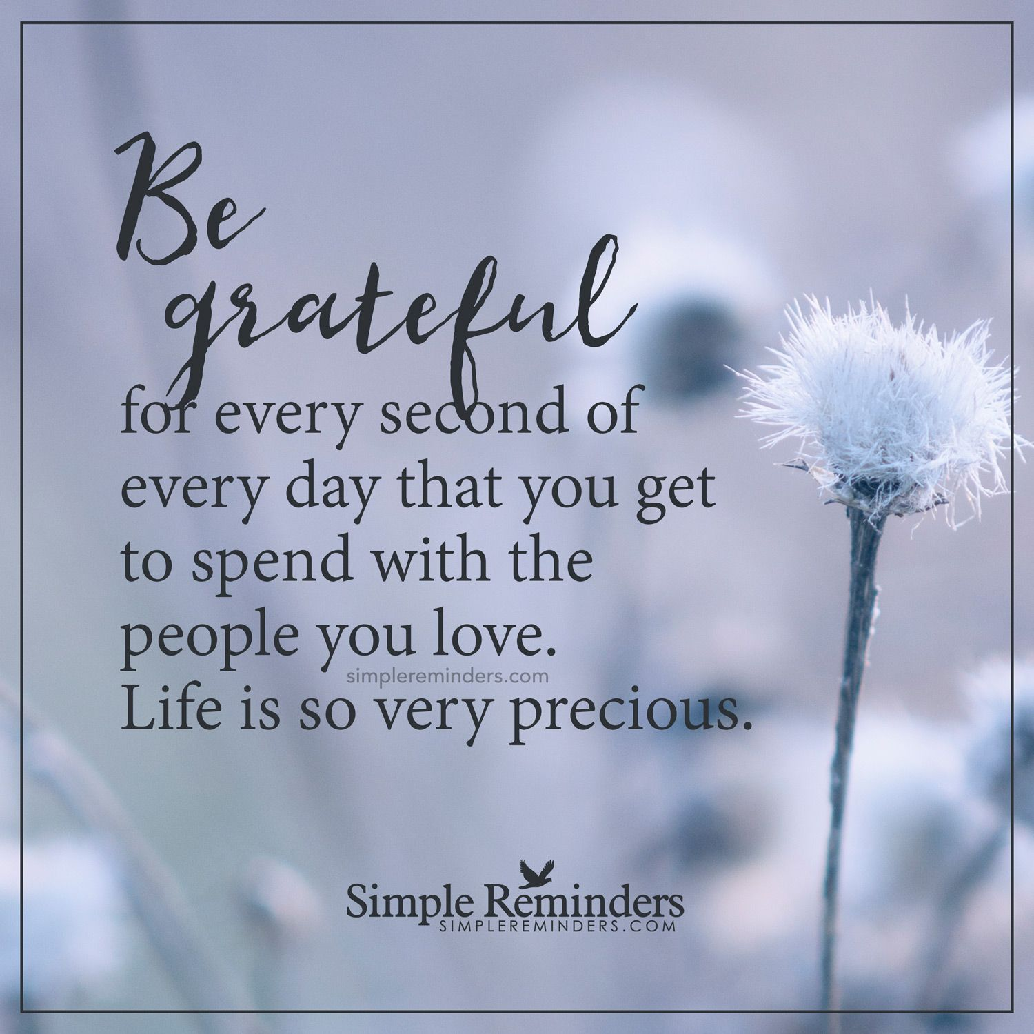 Love Quotes For Each Month Of The Year: Be Grateful For Every Second Be Grateful For Every Second