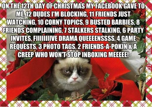 Funny Christmas Memes For Friends : The new 12 days of christmas. grumpy cat and memes