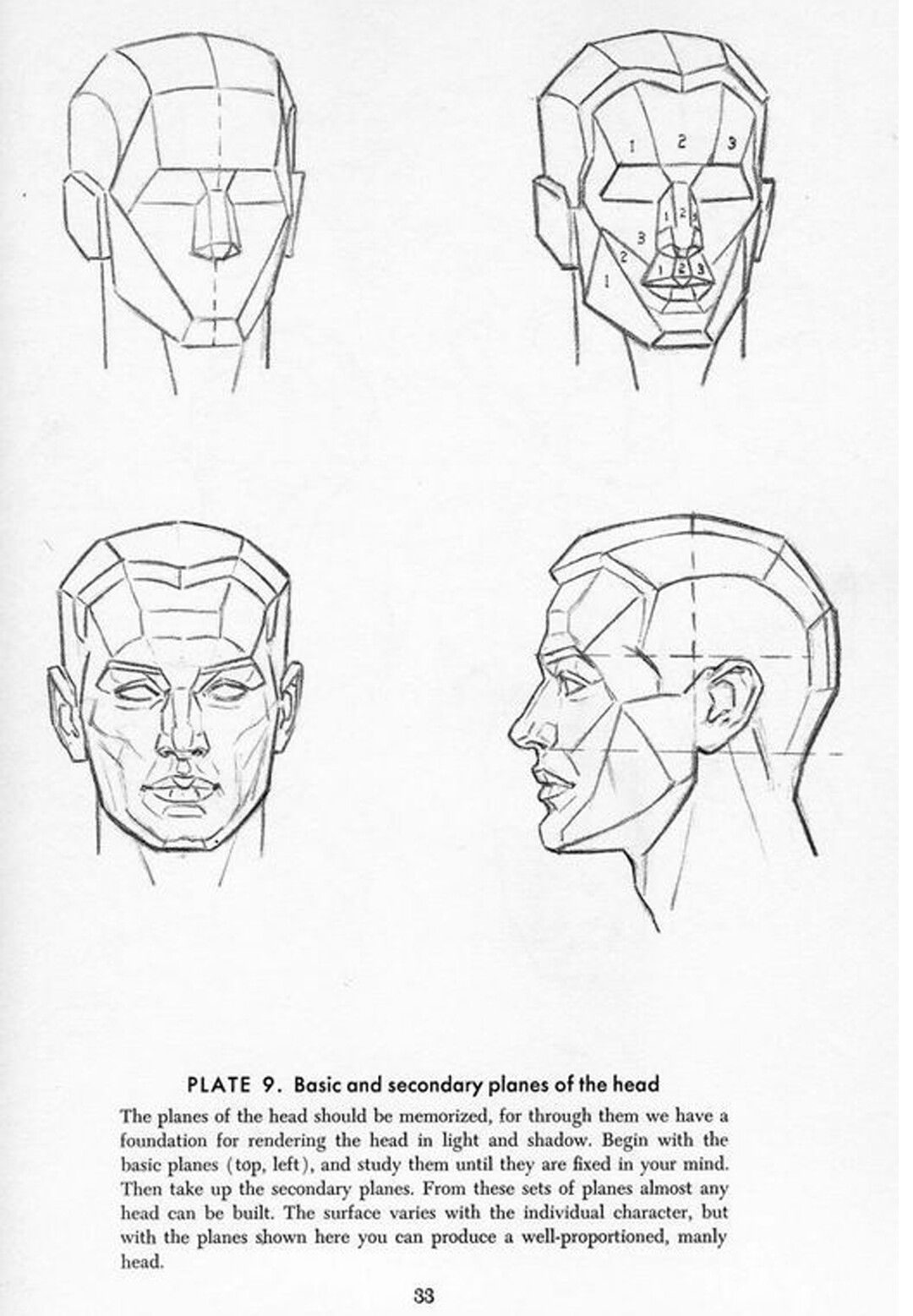 Andrew Loomis Drawing the Head and Hands