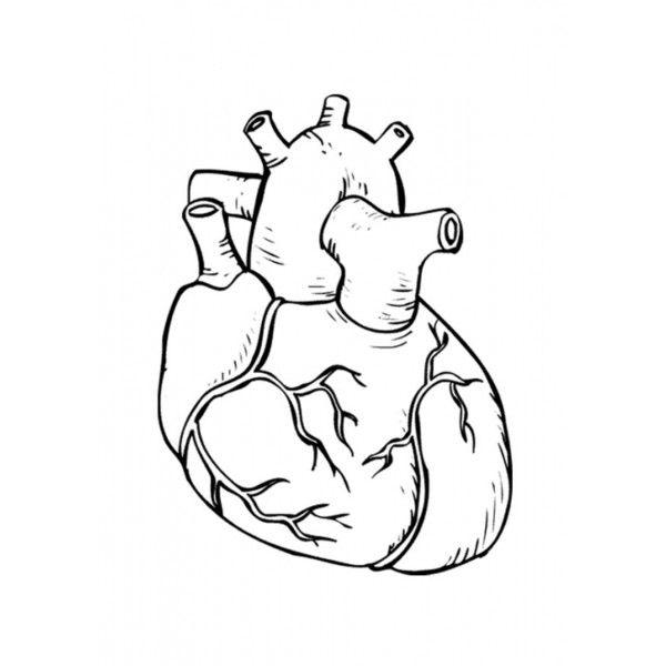 Dibujo Corazón para colorear e imprimir. Imágenes libres. - 9486 ...