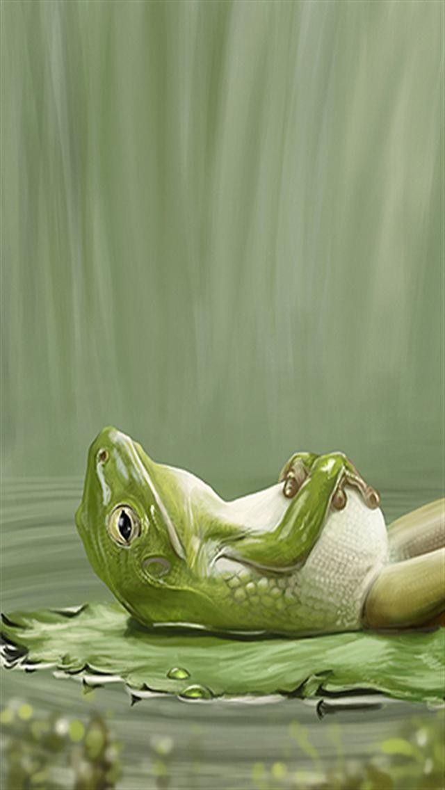 Animals Relaxing Photos Google Search Animals Nature Iphone Wallpaper Frog