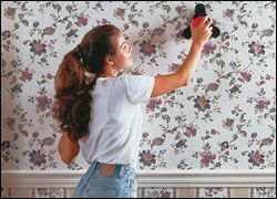 Wallpaper Removers Liquid and Gel Removers, Steamers