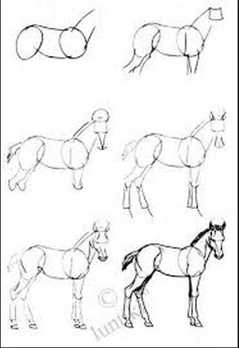 Como Dibujar Un Caballo Como Dibujar Un Caballo Como Dibujar Animales Aprender A Dibujar Animales