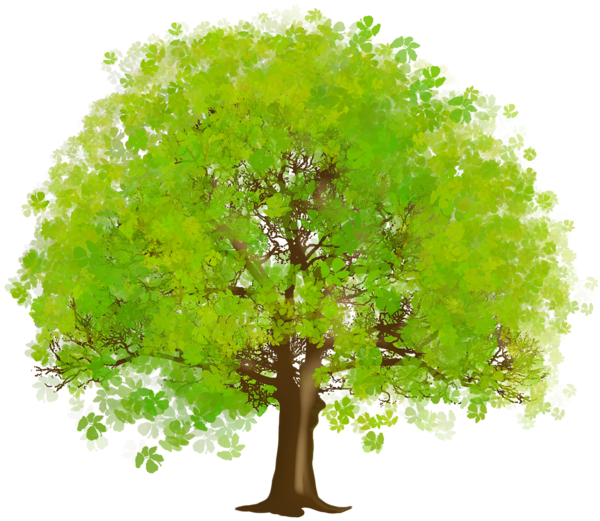 Large Green Tree Png Clipart Tree Clipart Tree Art Cartoon Trees