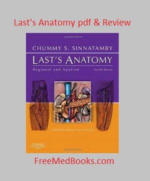 Read our complete review of lasts anatomy also download lasts read our complete review of lasts anatomy also download lasts anatomy pdf free and check fandeluxe Gallery