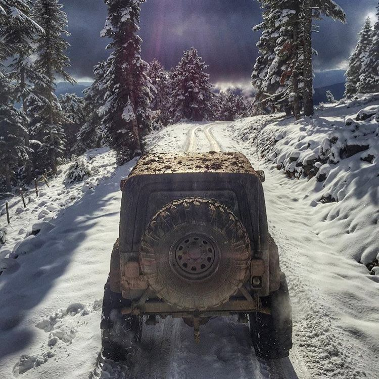 Pin on Ultimate Jeep Wranglers & Jeep Girls