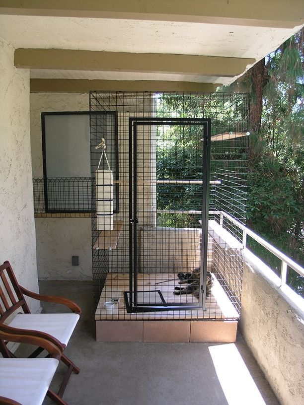 cat catio Google Search Cat Catio Pinterest Cat
