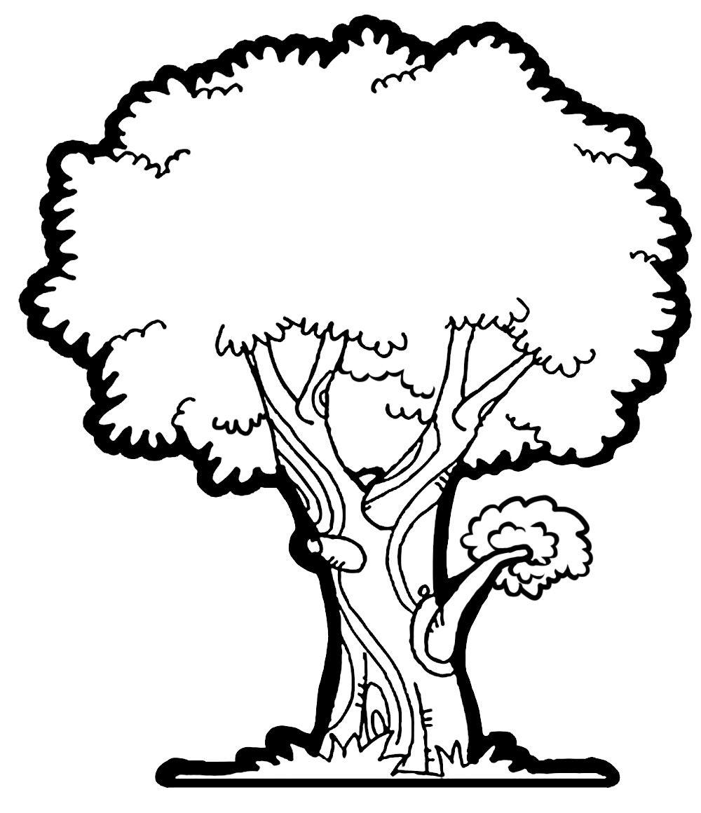 Mango Tree Clipart Boy Behind Tree Clip Art Tree Clipart White Tree