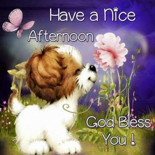 Image result for have great afternoon