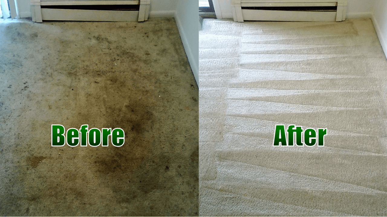 Dirt Free Carpet Cleaning Houston Tx In 2020 How To Clean Carpet Stain Remover Carpet Carpet Steam
