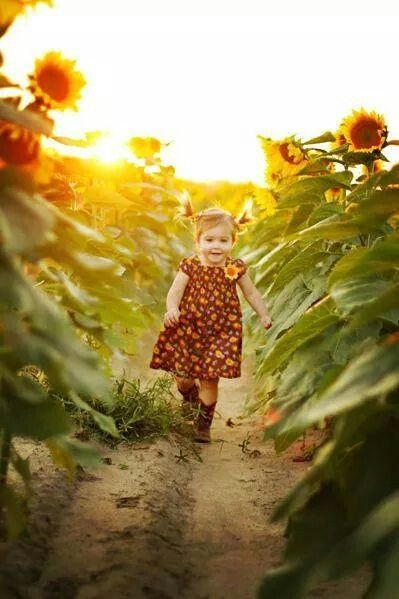Cutie girl in sunflowers