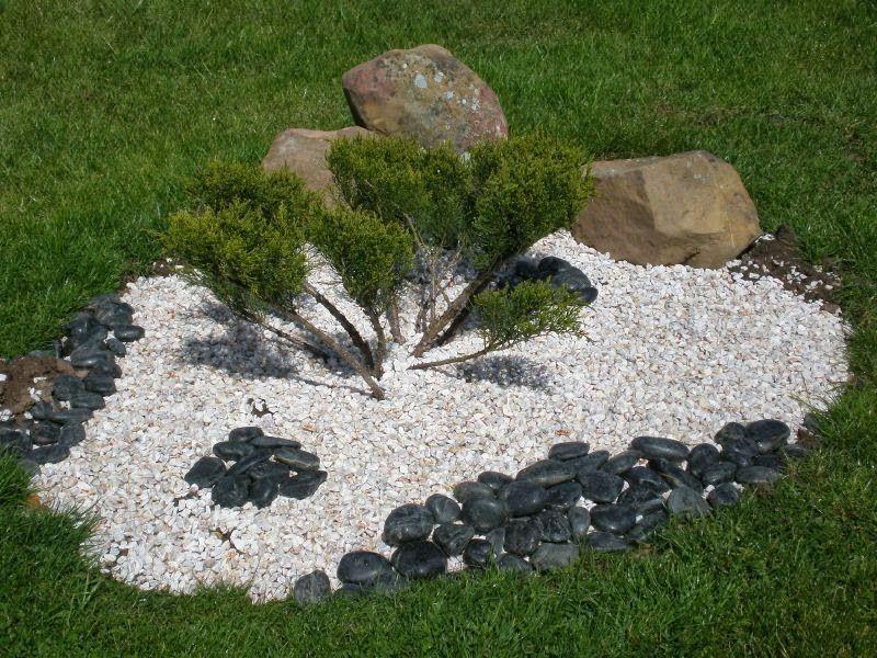 Jardin avec cailloux d coration idee jardin avec cailloux parterre avec - Cailloux deco jardin ...