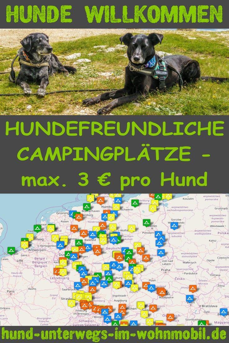 Photo of Hundefreundliche Campingplätze – max. 3 € pro Hund! Als Mehrhundehalter kom…