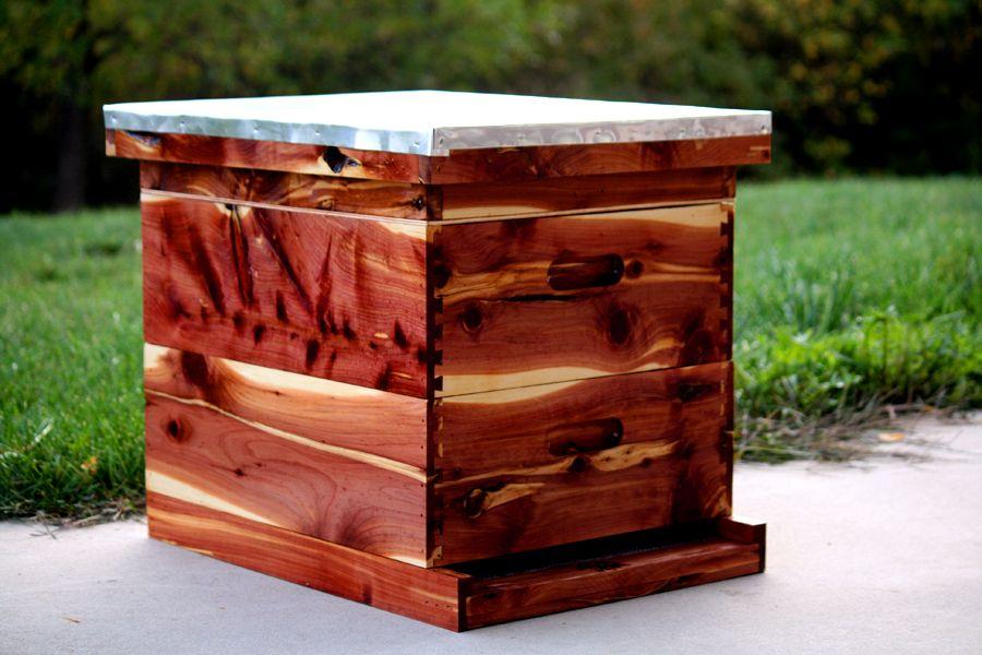 new hive made of cedar | Bees | Backyard beekeeping, Bee ...